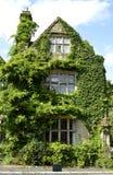 Weston Hall hotel in Warwickshire. Ivy growing on Weston Hall hotel in Warwickshire Royalty Free Stock Photo