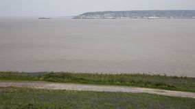 Weston-super-mare bay and bluebells Somerset England from Brean Down Royalty Free Stock Photos