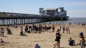 Weston-super-Mare beach with pier and donkies in August summer sunshine Somerset UK stock video