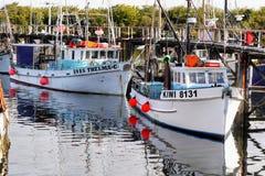 Westport, Haven, Westkust, Nieuw Zeeland Royalty-vrije Stock Foto's