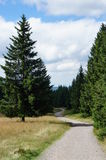 The Westweg in Black Forest, Germany Royalty Free Stock Image