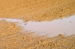 Wet agricultural soil royalty free stock image