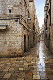 Wet alley at dawn Royalty Free Stock Photo