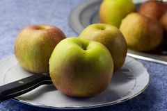 Wet apple. Apple after washing Royalty Free Stock Images