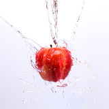 Wet apple. Apple drenched with water Royalty Free Stock Photography