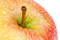 Wet apple Royalty Free Stock Image