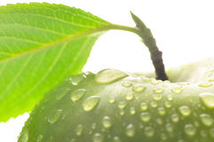 Wet apple with leaf Stock Photo