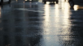 Wet asphalt, cars and light reflections stock video