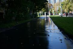 Wet asphalt road on a sunny day in autumn in Moscow city royalty free stock photography