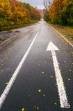 Wet asphalt road through forest in deep autumn. Gloomy rainy day background. painted arrow sign in fallen yellow foliage showing the direction Stock Images