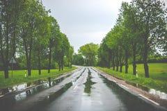 Asphalt road after rain royalty free stock photos