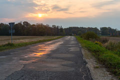 Wet asphalt road with sun reflections Stock Image