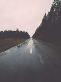 Wet asphalt road with sun reflections Royalty Free Stock Images