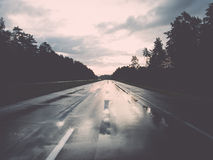 Wet asphalt road with sun reflections Royalty Free Stock Photo
