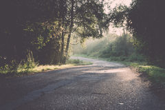 Wet asphalt road with sun reflections. Vintage. Stock Photography