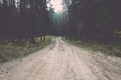 Wet asphalt road with sun reflections. Vintage. Stock Images