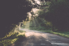 Wet asphalt road with sun reflections. Vintage. Stock Image