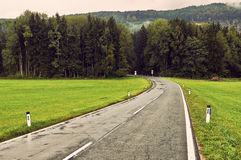 Wet asphalt road trought the deep forest. natural dramatic backg Royalty Free Stock Photography