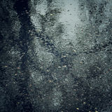 Wet asphalt with a tree trunk reflection - vintage effect. Royalty Free Stock Images