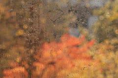Wet autumn glass of window Stock Photos