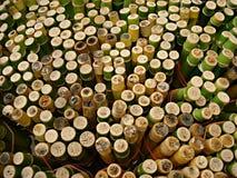 Bamboo cuts Royalty Free Stock Photo