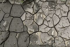 Wet barren soil in cracks Royalty Free Stock Photography