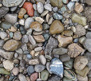 Wet beach pebbles Royalty Free Stock Photo
