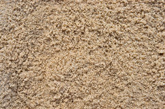 Wet beach sand Stock Image
