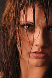 Wet beauty. Attractive female with wet tendrils of hair and gold flecked eyes she's staring into the camera Royalty Free Stock Photo