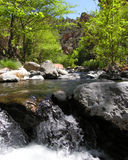 Wet Beaver Creek Fun - Arizona Stock Photography
