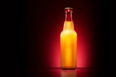 Wet beer bottle Royalty Free Stock Image