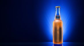 Wet beer bottle Royalty Free Stock Photos