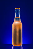 Wet beer bottle. On a colored background Stock Images