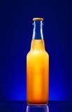 Wet beer bottle Stock Photography
