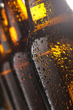 Wet beer Royalty Free Stock Photo