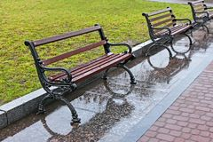 Wet benches after the rain Stock Images