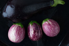 Wet black and purple striped eggplants closeup. Top view Stock Image