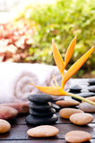 Wet black zen stones outdoor spa concept Royalty Free Stock Image