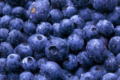Wet Blueberries Stock Photo