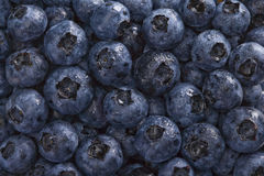 Wet Blueberries Background Stock Images