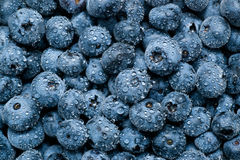 Wet blueberries background Stock Photo
