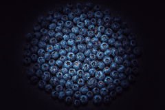 Wet blueberries on black slate Royalty Free Stock Images