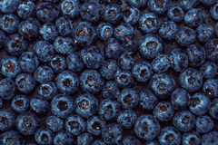 Wet blueberries on black slate Royalty Free Stock Photos
