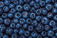 Wet blueberries on black slate Royalty Free Stock Photo