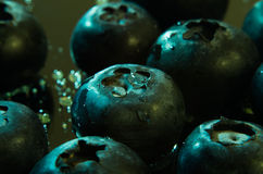 Wet blueberries low key macro Stock Photography