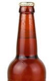 Wet bottle of beer Stock Photography