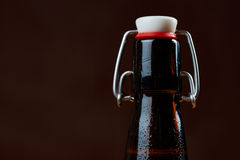 Wet bottles of beer Stock Images
