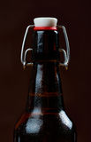 Wet bottles of beer Royalty Free Stock Images