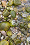 Wet boulders textured background Royalty Free Stock Photos