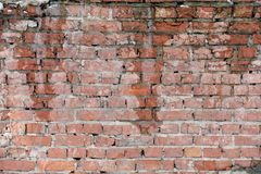 Wet brick wall. Closeup background of old red wet brick wall Royalty Free Stock Photography